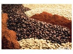 咖啡豆进口清关公司