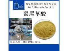 鼠尾草酸 迷迭香提取物 20%- 90% 鼠尾草提取物