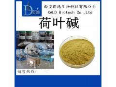 荷叶碱 2%~10% 荷叶提取物 植物提取物 比例提取物