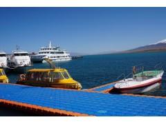 海运整柜thc 美国海运fba 海运整柜尺寸