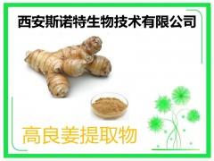 高良姜提取物 30:1 精细粉末 原料植提