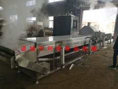 果蔬连续式蒸煮漂烫机 果蔬蒸煮漂烫线 果蔬蒸煮加工