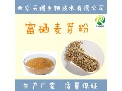 富硒麦芽粉-厂家  麦芽粉-价格 麦芽提取物