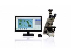 藻类智能鉴定计数分析系统