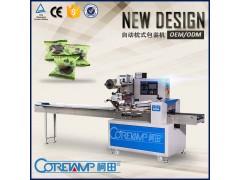 冰糖杨梅自动包装机设备 高速杨梅干包装机械