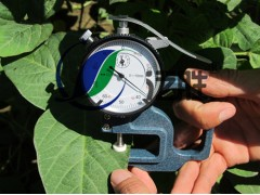 YHD-1 植物叶片厚度仪