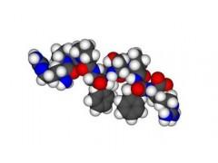 PNA肽核酸