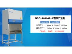 负压生物安全柜BSC-1100IIA2-X