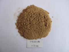 供应中性蛋白酶