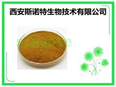 苏合香提取物 规格 10:1 斯诺特生产厂家