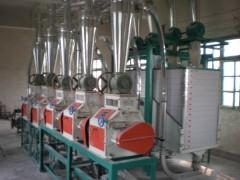 全自动小麦磨面机 6FTDP-20型全自动小麦磨面机