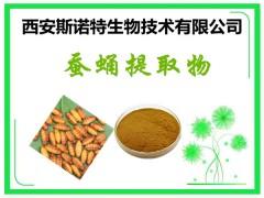 蚕蛹提取物 10:1 精细粉末 原料植提 发货快