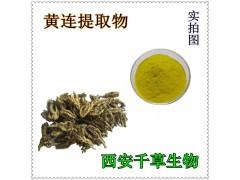 黄连提取物 厂家定制植物提取物黄连粉