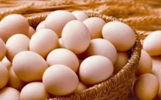 315消费提示三:柴鸡蛋土鸡蛋营养效果差异小
