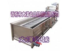气泡式桑葚清洗机 专业果蔬清洗设备