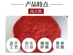 无色素FD冻干草莓粉奶茶烘焙速冻原料带籽草莓粉