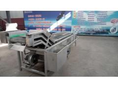 厂家专业定制果蔬清洗设备 葡萄干清洗机 品质保证