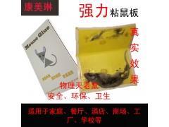 食品工厂粘鼠板家用灭鼠灭蟑捕鼠器餐厅酒店除四害产品