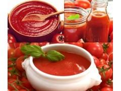 番茄鱼底料,番茄清汤锅,新鲜番茄酱批发