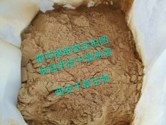 黄芩水溶粉厂家定制天然浓缩烘焙干燥 厂家定制黄芩纯浸膏