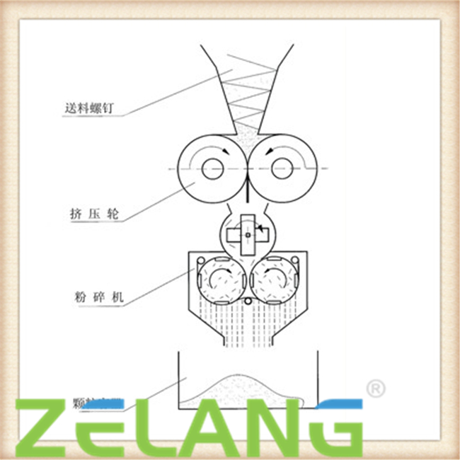 张文林:拥抱数字化机遇 共建智能世界