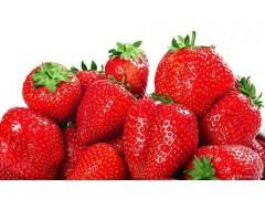 草莓提取物-厂家 草莓粉