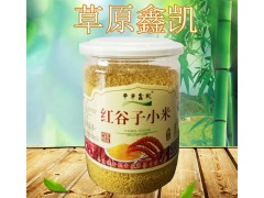 草原鑫凯精品黄小米 桶装、真空小包装  红谷子小米 奈曼小米