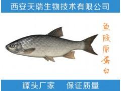 鱼胶原蛋白肽-价格  鱼胶原蛋白 厂家直销