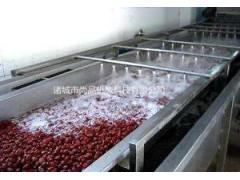 臭氧消毒杀菌洗菜机 豆芽黄瓜白菜果蔬自动清洗机