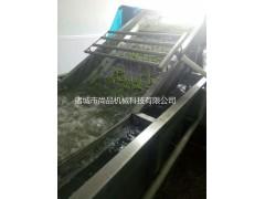 果蔬臭氧洗菜机 气泡式蔬菜清洗机
