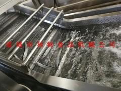 秋刀鱼清洗机 鱼类气泡清洗机 利特鱼类加工设备