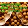 大量收购玉米大豆高粱荞麦青饼