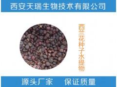 西兰花种子水提物   西兰花种子提取物 厂家直销
