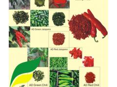 红色高辣度辣椒脱水 厂家直销 量大价优 出口品质保证