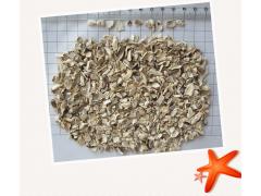 脱水蘑菇 厂家直销 量大价优 出口品质保证