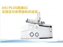 高纯氮氩分析专用气相色谱仪
