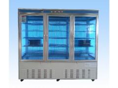RG-2000系列智能人工气候箱