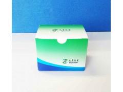 小反刍兽疫病毒实时荧光RT-PCR试剂盒
