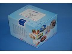 黄曲霉B1检测试剂盒