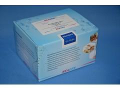 Reagen新霉素试剂盒