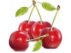 樱桃上市了,喜欢吃樱桃的你应该知道哪些事?