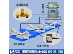 防爆电子皮带秤专业生产厂家