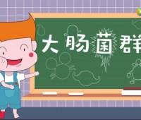 科普动画:秒懂大肠菌群 (146播放)