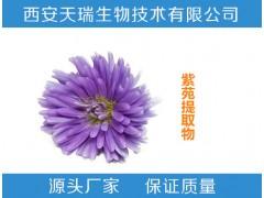 紫苑提取物10:1 20:1  厂家直销