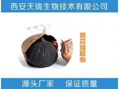 黑蒜提取物10:120:1 黑蒜粉 食品原料