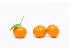 砂糖橘浓缩汁