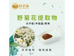 野菊花提取物 厂家直销化妆品天然植物提取物原料