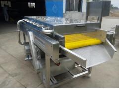 莲藕清洗机设备毛辊高压水喷淋去清洗机