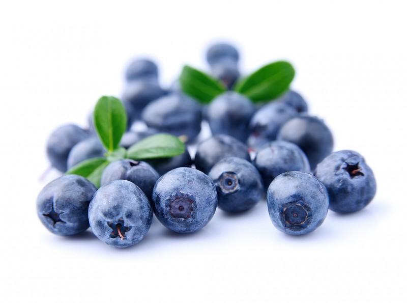 1蓝莓浓缩汁