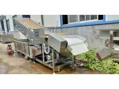 多功能豆芽菜气泡清洗机生产厂家